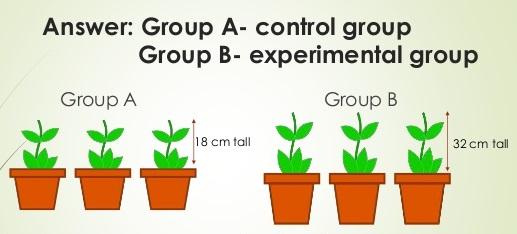 効果研究(比較実験・対照実験)は条件を統制してなんぼです。
