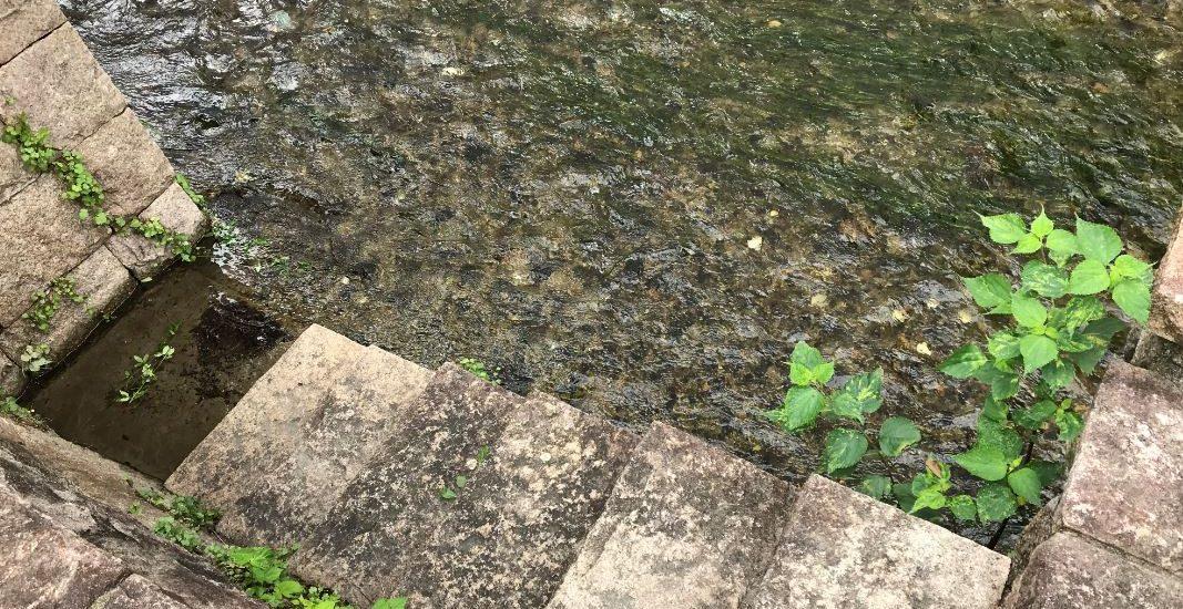白川に降りる小さな石段